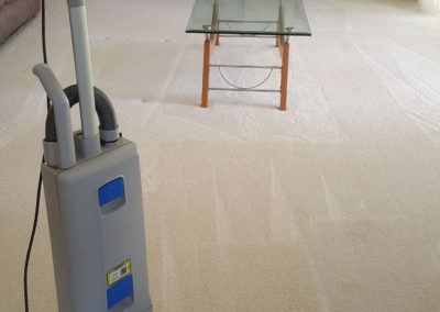 Fraser_Coast_Carpet_and_Pest_Gallery-Image-1